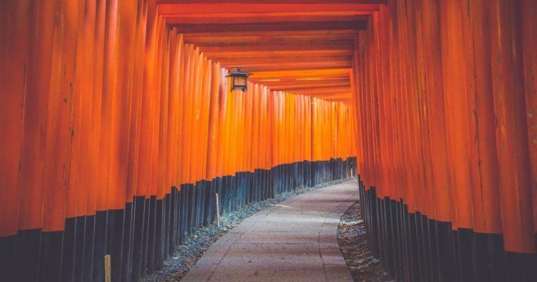 【京都・神戸・姫路】ひとり旅にオススメなスポット!