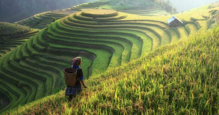 中国大連の田舎生活は薪を使うスローライフ