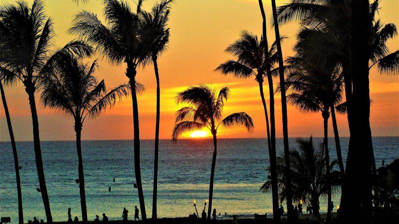 ハワイ島で感じれるディープなハワイ体験